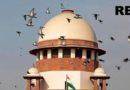 RBI not mandated to hear job loss pleas