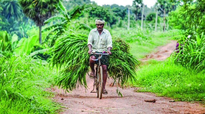 Farm Amendment Bill 2020 and Its Pros and Cons.