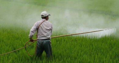 Rs. 65,000 crore booster for fertiliser industry, to help clear subsidy dues