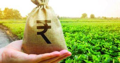 Govt eyes DBT for fertiliser subsidy now